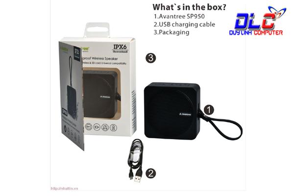 Loa Bluetooth chống thấm nước Avantree BTSP-950-BLK (A3042)